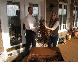 First bare root stock delivered to Two Willows